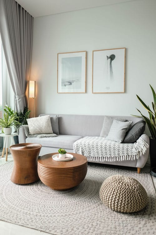 Adelaide SA Domestic Cleaning Service - Living room