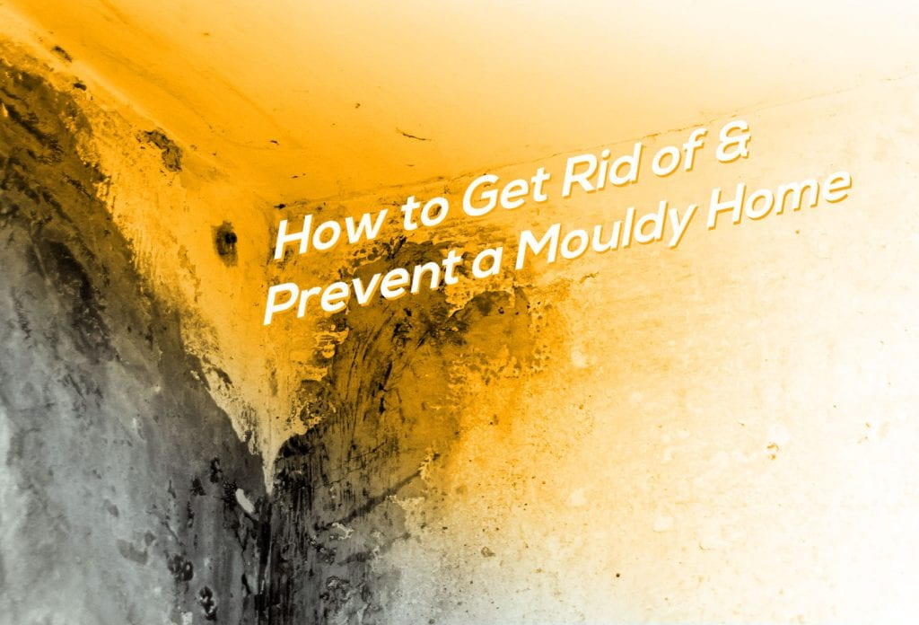 How-to-Get-Rid-of-and-Prevent-a-Mouldy-Home